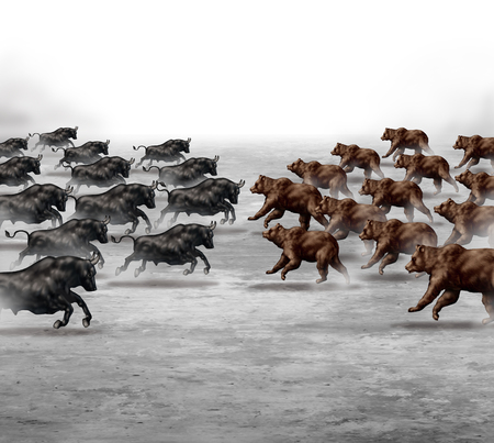 bears: Stock market trend business concept and financial prediction uncertainty symbol as a heard of bulls and bears running towards each other to set the direction of an economic forecast.