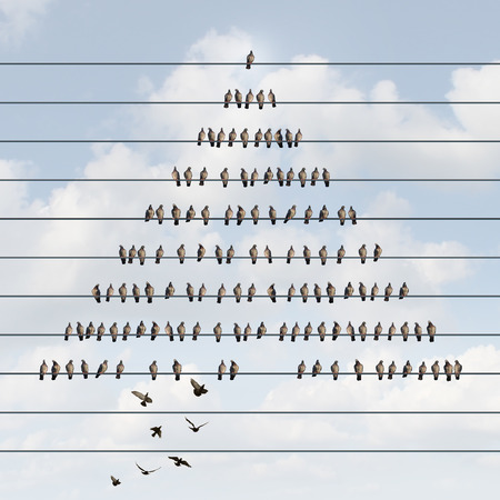 unsustainable: Business pyramid concept and hierarchy structure symbol as a multilevel marketing scheme with an organized group of birds on a wire with other bird recruit members joining at the bottom.