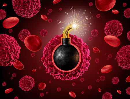 Cancer time bomb warning concept as a dangerous cancerous cell inside a human body with an explosive ready to explode as a symbol for spreading and growing a malignant growth. Archivio Fotografico
