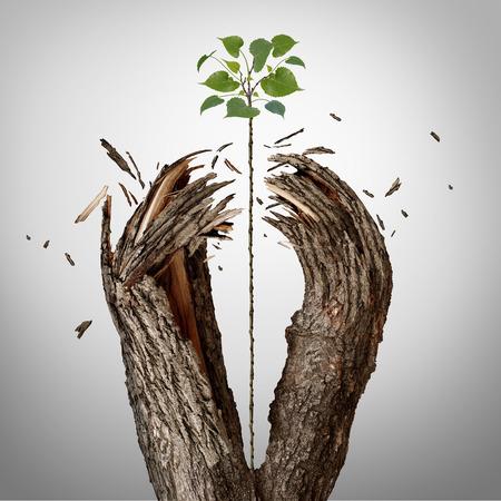 Doorbreken concept van een groene jonge boom groeit omhoog en het vernietigen van een boom barrière als een zakelijk succes metafoor voor potentiële ambitie en sterke wil om te slagen.