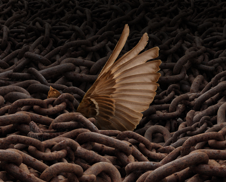 burdened: Struggle for freedom concept and weighed down symbol as a load or group of rusty metal chains holding down a trapped bird with a wing reaching out for help trying to escape. Stock Photo