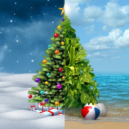 clima tropical: Invierno y tropical concepto de vacaciones de Navidad como un pino decorado festivo en una mitad y un arreglo de plantas tropicales en una playa cálida soleado como una metáfora de los viajes y el tourismduring el nuevo año de vacaciones. Foto de archivo