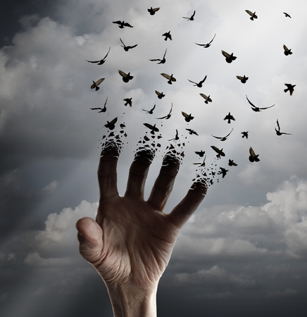 Life transformation concept as a hand reaching out tranforming into flying birds following sunlight as a freedom symbol of hope renewal and spirituality or human faith.
