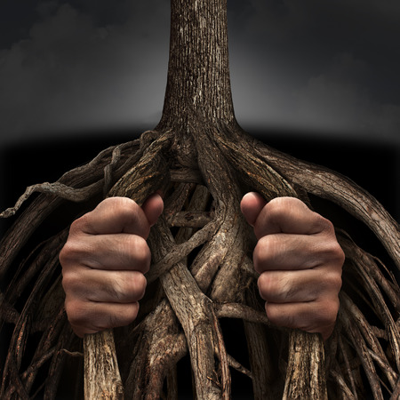 roots: Trapped concept and mental prison symbol as a person caged and imprisoned by the slow growing roots of a tree as a metaphor for chronic ingrained suffering due to an addiction or psychological illness. Stock Photo