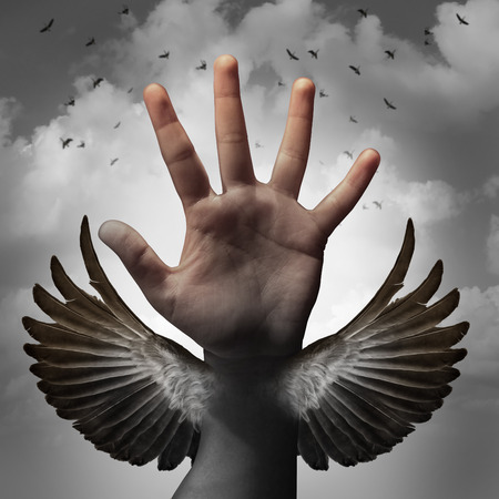 transforming: Build self confidence concept and believing in inner potential as a human hand transforming into a bird wing as a metaphor for learning and career education to gain freedom through education.