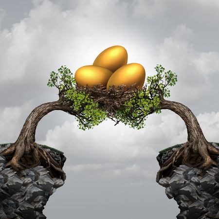 Investment group securitty business concept as two distant trees on cliffs coming together to unite and support a nest full of golden eggs as a symbol and financial metaphor for team investing or global funds advice.