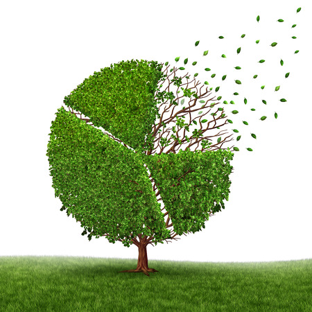 competitiveness: Financial market loss and losing profit as a pie chart in a tree growing green leaves falling off as a business concept of competition pressure as a corporate graph symbol of economic challenges and change on a white background.