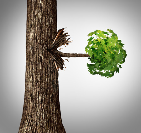 outgrowth: Offshoot concept as a lateral move business metaphor as a tree trunk with a sideways branch and leaves bursting out horizontaly as an icon for branching out or a spin off idea.