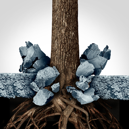 metaphors: Power of determination through growth as a business concept with a tree and roots growing through a thick slab of cement breaking out of the obstacle as a powerful metaphor for success motivation.