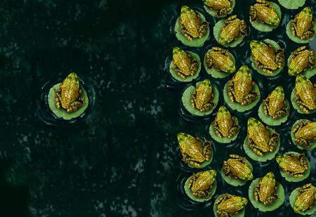 discriminacion: El individualismo y la confianza o la individualidad s�mbolo y el concepto pensador independiente como un grupo de ranas verdes que descansan sobre una lilypad sobre el agua con una sola persona en la direcci�n opuesta como un icono de negocio. Foto de archivo