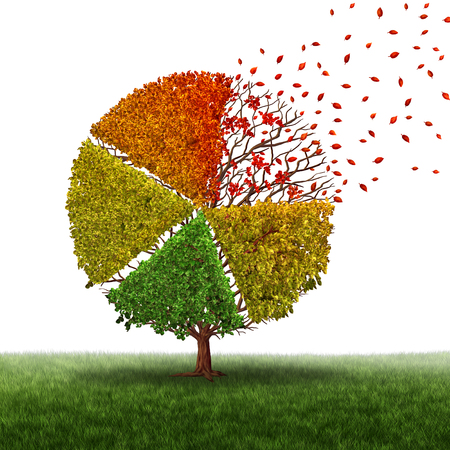 transition: Corporate change and changing market concept and losing business pie chart as an aging green tree with leaves turning yellow to red and falling off as a transition metaphor in transformation conditions as a financial graph chart. Stock Photo