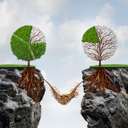 financial cliff: Business agreement concept and global connection financial success symbol as two trees shaped as tree pie charts on seperate divided cliffs joining roots together to find a way to take advantage of each others strength.