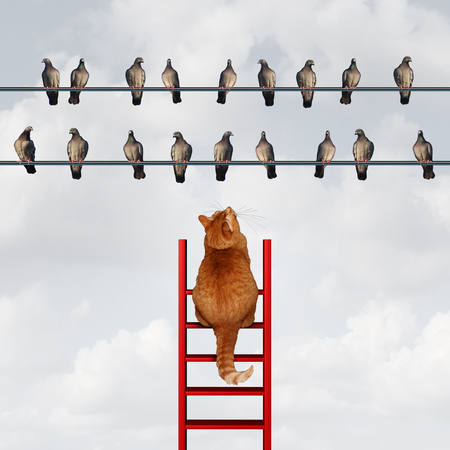 concept: Llegar a su concepto de la meta y el establecimiento de metas metáfora de negocios como un gato que sube una escalera para llegar a un grupo de pájaros en un alambre de alta como símbolo motivación para la estrategia y la planificación.
