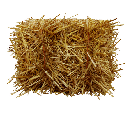 haystack: Bale of hay front view isolated on a white background as an agriculture farm and farming symbol of harvest time with dried grass straw as a bundled tied haystack.