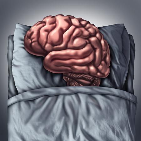 Gehirn Schlaf Gesundheitsversorgung und medizinische Konzept für Leistungen des Denkorgans ruht, indem sie als kognitive und neurologische Metapher für die Meditation in einem Bett schlafen auf ein Kissen und tiefe Gedanken Therapie.