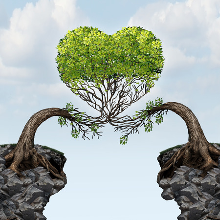 Love connection concept as two trees on divided cliffs merging together as a married couple or dating romantic pair shaped as a valentine heart as a romance metaphor for overcoming obstacles in a connected relationship.