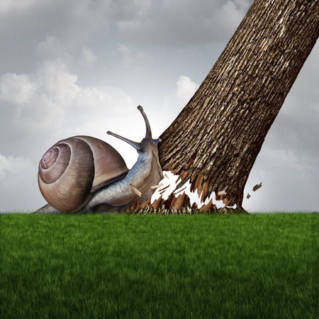 Strength concept as a snail pushing down a large tree trunk as a business success metaphor for the power of motivation and a symbol for confidence and courage to accomplish anything. Archivio Fotografico