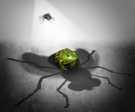 misconception: Perception and reality as the giant cast shadow of a small bug falling on a fearful frog as a psychological metaphor for false impression or delusion and misconception symbol.