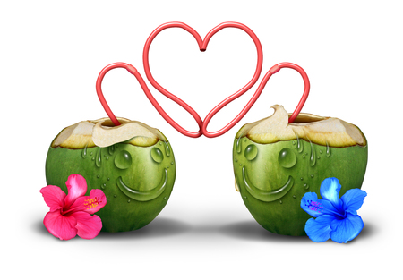 romantically: Intimate couple romantically in love as two coconut tropical drinks with faces made of water drops and straws embracing and hugging together as a cute relationship symbol and a valentine day icon. Stock Photo
