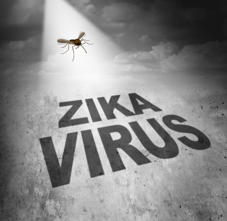 virus: Zika virus risk symbol as the shadow of a disease carrying mosquito forming text that represents the danger of transmitting infection through bug bites resulting in zika fever. Stock Photo