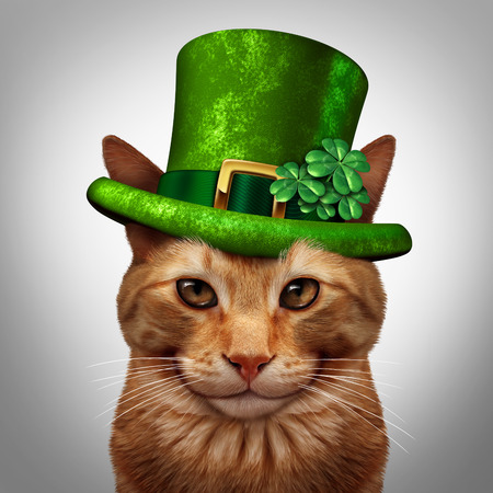 march 17: Saint Patricks day cat concept as a fun happy smiling feline pet wearing a leprechuan green hat with shamrock four leaf clover decoration as a march 17 holiday celebration symbol.