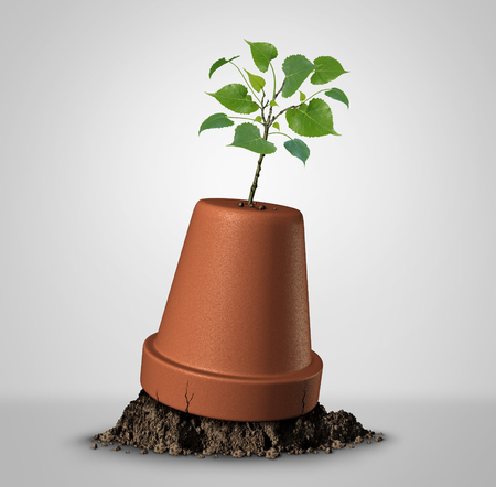 upside down: Never give up hope concept of persistence and the unstoppable force of nature as a sapling plant emerging out of an upside down flower pot as a success metaphor and motivation symbol to keep on fighting for your dream. Stock Photo
