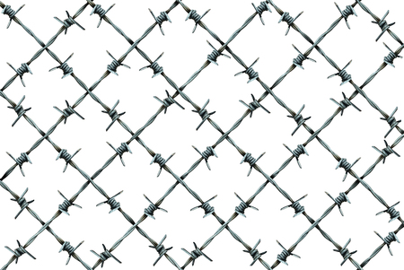 imprison: Barbed wire fence pattern isolated on a white background as metal wire with sharp spikes as a security and danger metaphor for incarceration and brutality symbol or protection icon.
