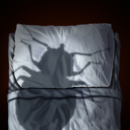 fear: Bed bug fear or bedbug worry concept as a cast shadow of a a parasitic insect pest resting on a pillow and sheets as a symbol and metaphor for the anxiety horror and danger of a bloodsucking parasite living inside your mattress.