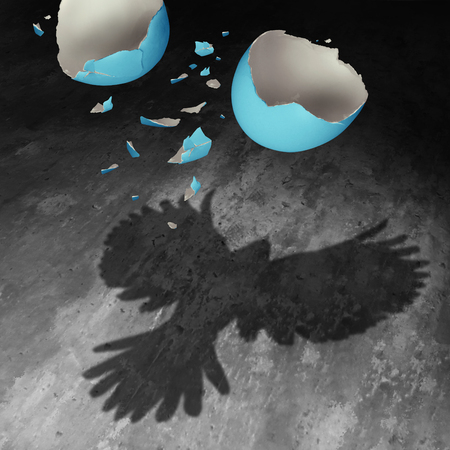 Concept of freedom as a falling broken egg shell in the air creating a cast shadow of a bird with open wings as a positive motivation metaphor for transformation success and determination to succeed.