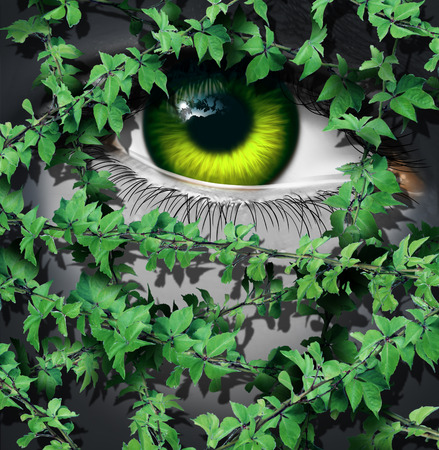 Nature human concept as the green eye of a person looking behind a growing group of leaf vines as an environmental idea or an earth day vision symbol. Stock Photo
