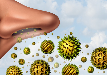 fever: Pollen allergy concept and hay fever allergies as a medical symbol as 3D illustration microscopic organic pollination particles flying in the air with a large human nose breathing in as a health care symbol of seasonal illness. Stock Photo
