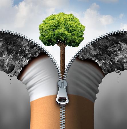 Sigaret concept en de tegen het roken symbool als een tabaksproduct geopend met een 3D-afbeelding Rits het onthullen van een schone blauwe lucht en gezonde groene boom groeit als een symbool voor de gezondheid van levensstijl te veranderen. Stockfoto
