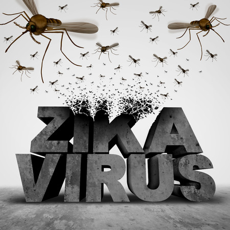 mosquitos: Zika virus danger concept as a 3D illustration text transforming to a group of swarming infectious mosquitos spreading disease as an outbreak epidemic public health risk and fear symbol.