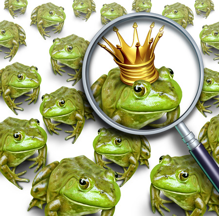 Searching for leadership or search and business recruitment concept as a group of frogs and one individual standing out with a king crown as a metaphor for the right chosen one with 3D illustration elements. Stock Photo