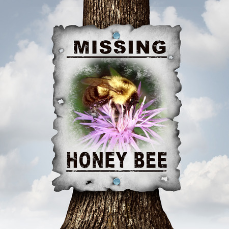 decline: Honey bee missing concept or disappearing bees message sign as an agriculture symbol for farming pollination crisis as the decline and vanishing  pollinating insects in a 3D illustration style.