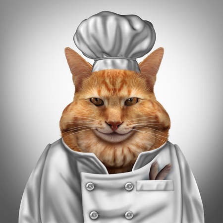appetite: Cat chef humorous concept as a fat feline wearing a cook uniform  with feathers in a pocket as a veterinarian pet nutrition symbol with 3D illustration elememnts.