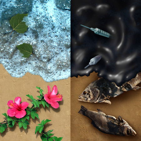 dead fish: Environmental concept with a clean beach with natural plants and a dark contrasting opposite side with an oil spill disaster with dead fish and medical waste pollution with 3D illustration elements. Stock Photo
