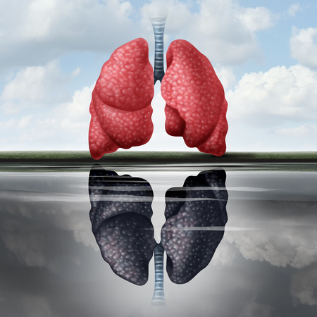 emphysema: Lung health concept as healthy lungs casting a reflection in the water of an unhealthy human organ as a medical metaphor for cardiovascular disease risk with 3D illustration elements.