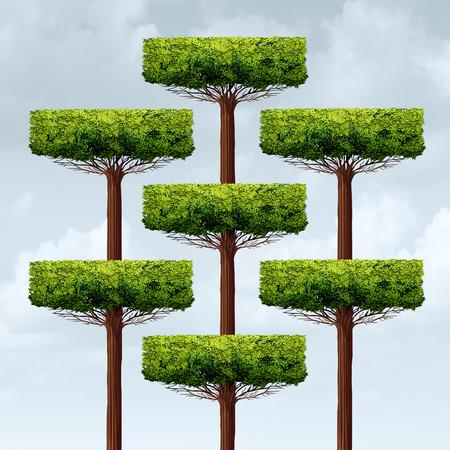 Organisation croissance de la structure comme un og groupe organisé arbres qui poussent dans une structure d'entreprise comme une métaphore de l'entreprise financière pour le montage en réseau dans un style d'illustration 3D. Banque d'images - 58181602