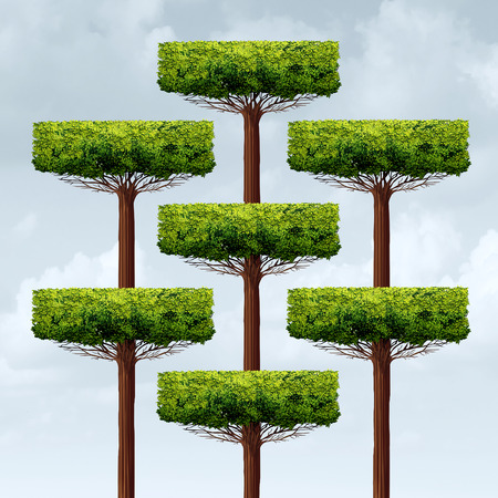 structuring: Organization structure growth as a group og organized growing trees in a business structure as a financial corporate metaphor for networking assembly in a 3D illustration style. Stock Photo