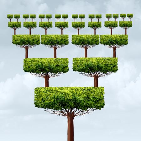 concept d'entreprise de la franchise et l'expansion de la pyramide d'affaires arbre de succès comme une augmentation de la franchise ou de la croissance franchisé structure symbole dans un style d'illustration 3D.