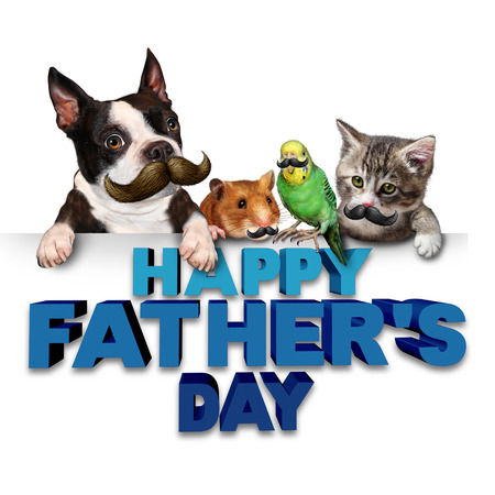 fatherhood: Fathers day greetings fun concept as a group of pets with mustaches or moustache symbols as a humorous celebration of dad and fatherhood parenting with 3D illustration eleements.