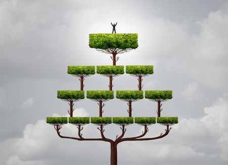 Business success climb as a businessman rise to the top as a peron on the summit of a pyramid tree structure as a financial metaphor for reaching career goals in a 3D illustration style.