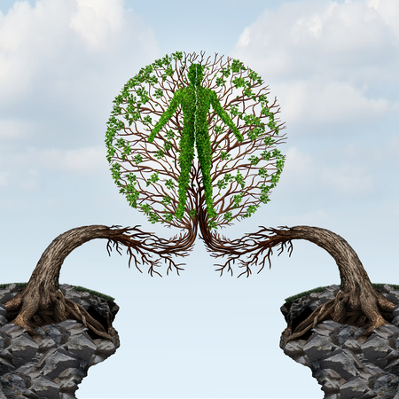 Global unity and international community partnership concept as two trees from two distant cliffs joining together to form a human shape as a friendship unity and cooperation success in a 3D illustration style.