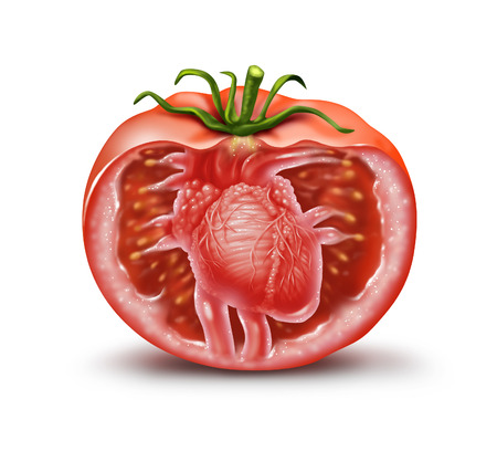 antioxidant: Tomato heart health medical icon as a fruit and vegetable healthcare symbol for natural antioxidant and cardiovascular nutrition supplement to help prevent heart attacks and strokes rich in lycopene and carotenoids in a 3D illustration style. Stock Photo