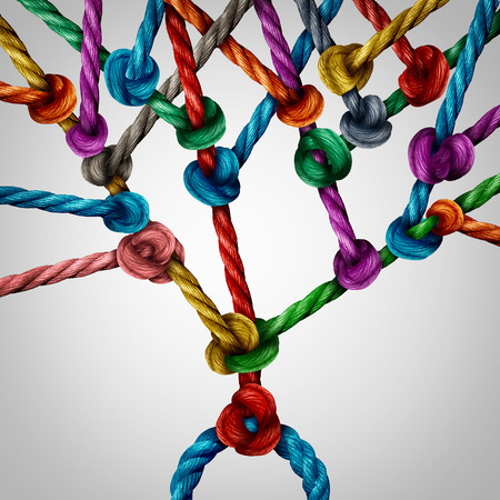 connects: Network tree connection as a group of connected ropes tied together as a growth branching structure.