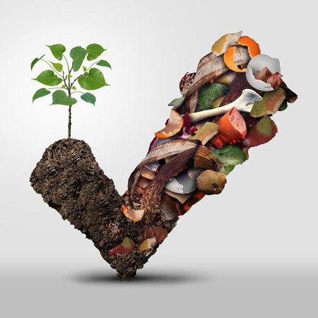 composting: Compost symbol life cycle symbol and a composting stage system concept as a pile of rotting fruits egg shells bones and vegetable food scraps shaped as a check mark with soil resulting in a ecological success with a sapling growing.
