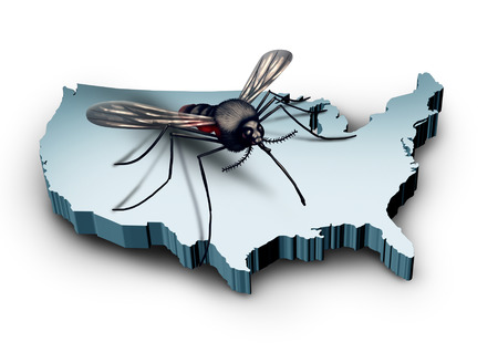 health concern: Zika virus in the United States concept as a mosquito sitting on a 3D illustration of the country of America as a medical health crisis and public health concern. Stock Photo