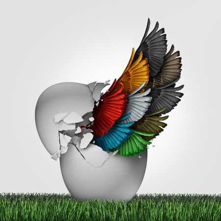 society: Business organization start as a concept for a new startup corporation or starting a venture with diversity for teamwork success as a group of diverse wings emerging out from an egg with 3D illustration elements.