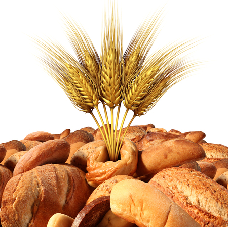 wheat harvest: Wheat and bread with a variety of fresh baked goods with natural grains and oats as a food and agricultural symbol with 3D illustration elements isolated on a white background. Stock Photo